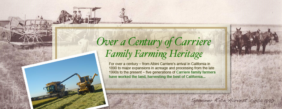 2-Heritage-carriere-homepage-slider